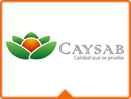 logo-caysab